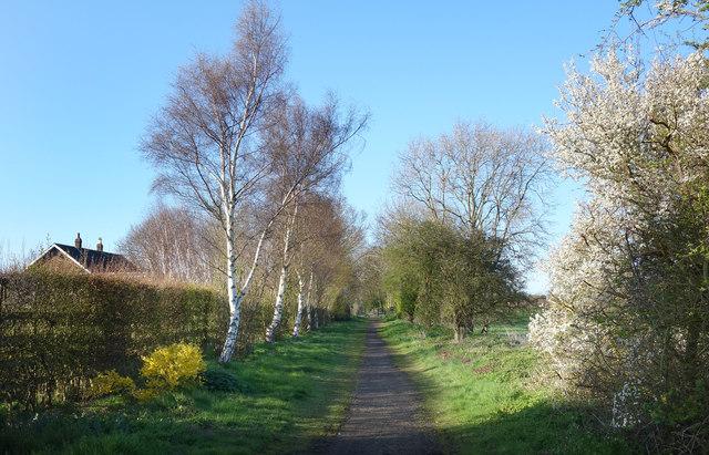 Hornsea Rail Trail at Whitedale