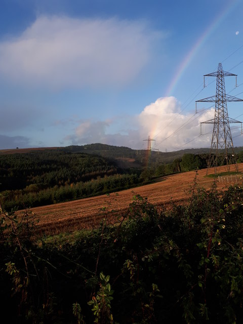 Electricity pylons from Longdown Road