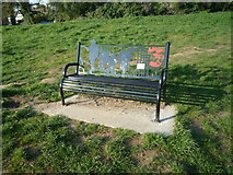 SO5074 : Battle of the Somme Centenary Seat (Ludlow) by Fabian Musto