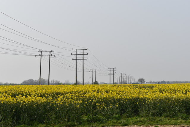 Pylons near Strattonhall Drift