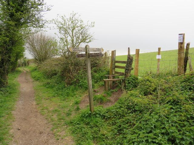 Bridleway and footpath near Pyecombe