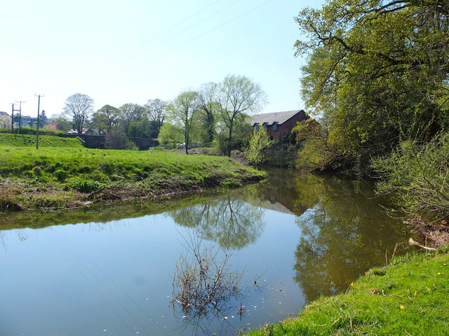 The River Dane near Glebe Farm