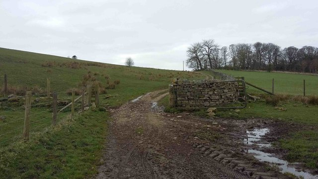Bridleway towards A696 and Monkridge Farm