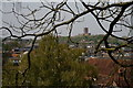 SU9949 : View From Guildford Castle by Peter Trimming