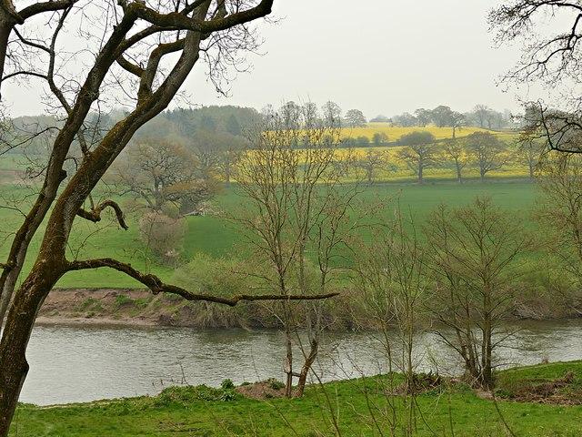 Farmland beside the River Severn