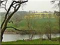 SO7484 : Farmland beside the River Severn by Graham Hogg