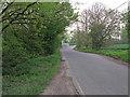 TQ6399 : Green Street, Fryerning by Roger Jones