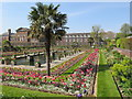 TQ2580 : Sunken Garden at Kensington Palace with tulips by David Hawgood
