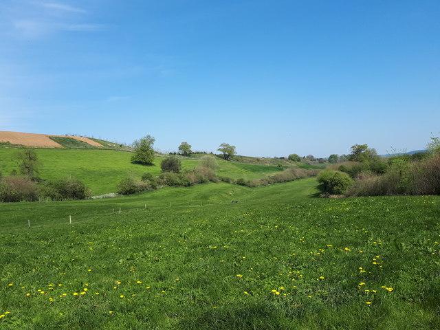 Valley below Huish Lane