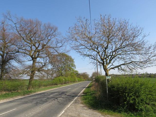 Harap Road, near Fishburn