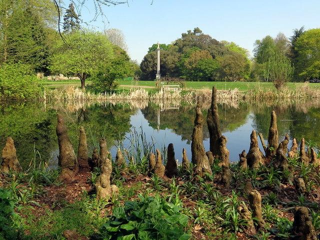 Lake, Syon Park