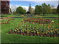 SP2864 : Spring bedding display 2018, St Nicholas Park, Warwick by Robin Stott