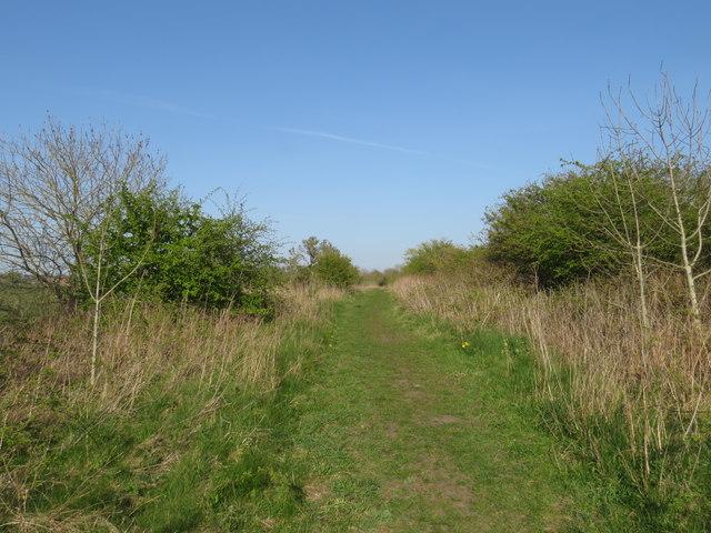 Former railway, Trimdon Grange