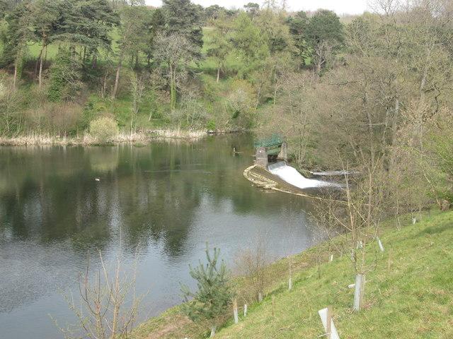 Weir at Ashford Lake