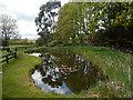 SP7355 : Duck pond - The Greyhound, Milton Malsor by Stephen McKay