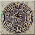 TQ2978 : Coal plate, Gloucester Street, SW1 by Robin Webster