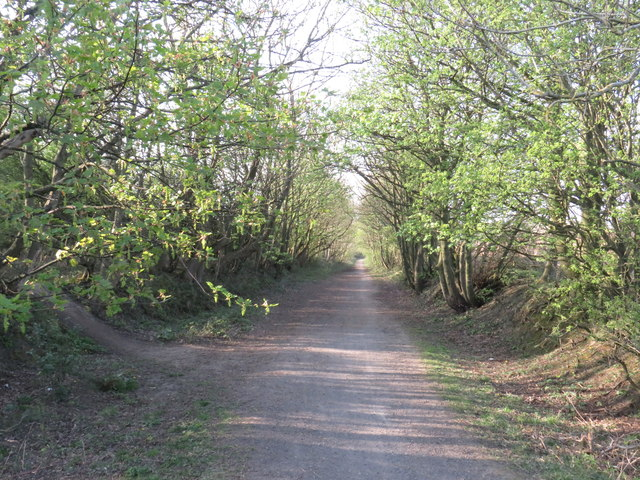 Former railway path near Sunderland