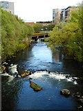 NS5666 : Falls on the River Kelvin by Richard Sutcliffe