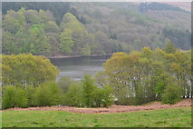 SK1887 : Ladybower Reservoir near Hurst Clough by David Martin