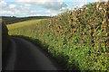 SX8280 : Beadon Lane #4 by Derek Harper