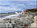 TV5596 : Seven Sisters Cliffs from Birling Gap by PAUL FARMER