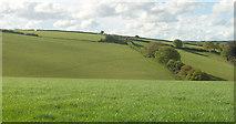 SX8281 : Farmland above Greatrock Farm by Derek Harper