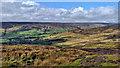 SE6499 : Upper Farndale by Mick Garratt