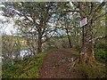 NH7676 : Circular path around Loch Kildary by valenta