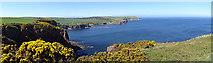 NJ8466 : Pennan Bay by Anne Burgess