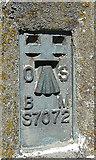 NJ8665 : OS Plaque by Anne Burgess