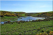 NJ8664 : Wayside Pond by Anne Burgess