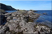 NJ8865 : Intertidal Rocks by Anne Burgess