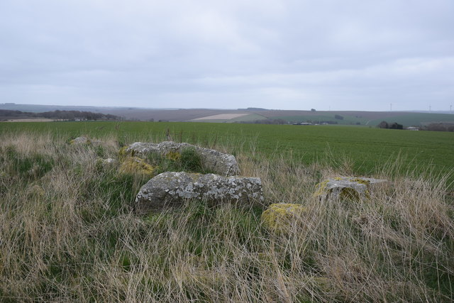 Stones from Mains of Hatton stone circle