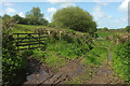 ST4413 : Gates and footpath near Sandy Hole by Derek Harper