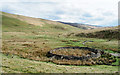 NT3445 : Sheepfold and valley of Middle Burn by Trevor Littlewood