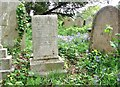 TG2408 : The Pond Family grave by Evelyn Simak