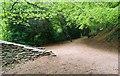 NO3801 : Letham Glen, Leven by Bill Kasman