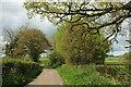 ST5010 : Lane from Hardington Marsh by Derek Harper