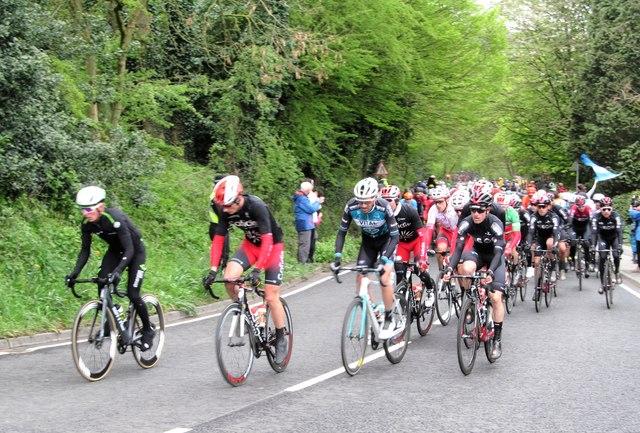 The Tour de Yorkshire peloton 2019