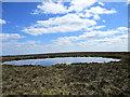 N2501 : Clear Lake by kevin higgins