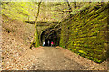 NT2340 : Approach to western portal of Neidpath Tunnel by Trevor Littlewood