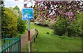 NO3801 : Path to Letham Glen by Bill Kasman