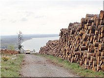 J3629 : Northern Ireland Forestry Service van in Donard Wood by Eric Jones