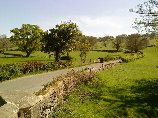 Ilam-Moor Lane