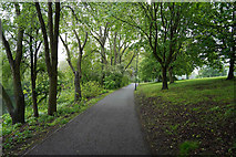 SK3536 : Footpath by the Derwent by Malcolm Neal