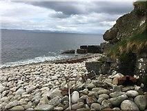 G7657 : Leitrim Coast - Redbrae, Tullaghan, Co. Leitim by Higgins