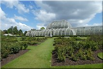 TQ1876 : Rose Garden and Palm House by DS Pugh