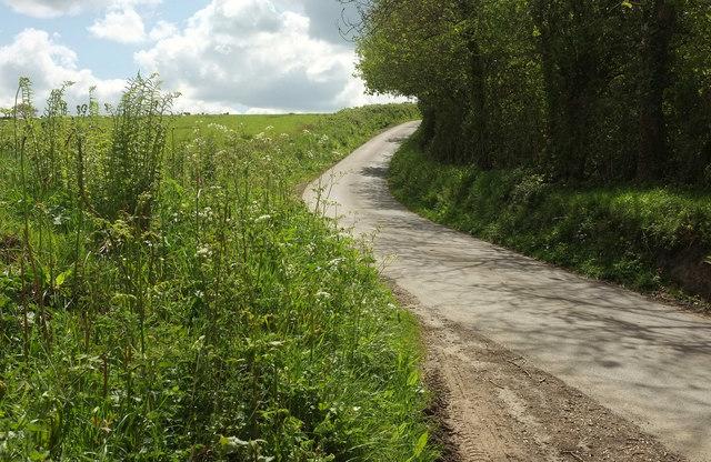 Lane to North Heale