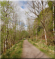 NN3098 : Old railway line, by Loch Oich by Craig Wallace