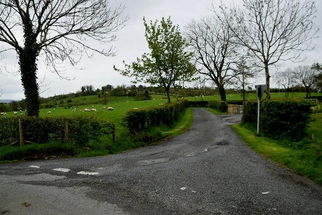 Dead-end road, Ballykeel by Kenneth  Allen